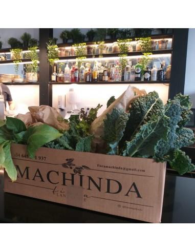 Caja de verduras Machinda